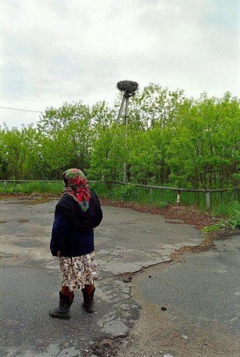 Чернобыль, Украина. Изображение № 7.