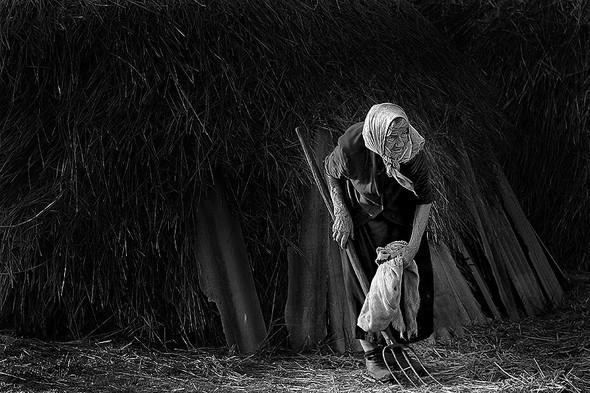 Евгений Павленко. Изображение № 28.