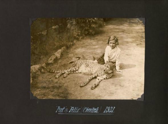Лондонский Зоопарк 30-х. Изображение № 6.