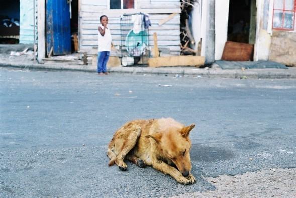 Ghetto story-мыс Доброй Надежды. Изображение № 7.
