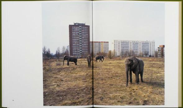 10 альбомов о современном Берлине: Бунт молодежи, панки и знаменитости. Изображение №102.