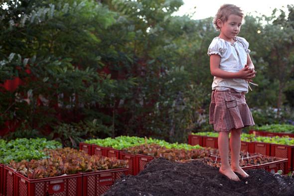 Изображение 11. Я садовником родился.. Изображение № 20.