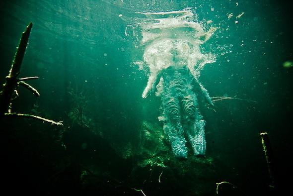 Подводная съемка OmniPhantasmic. Изображение № 9.