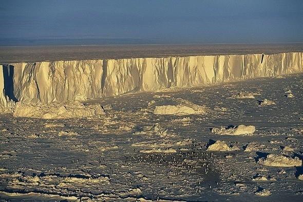 Колония императорских пингвинов. Остров Бьюфорт, Антарктида. Изображение № 15.