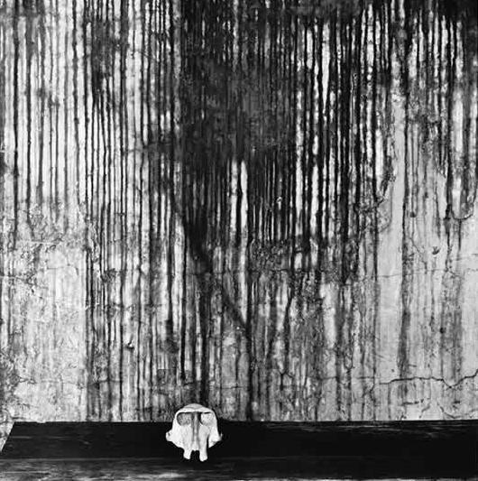 ROGER BALLEN: американский фотограф-мистик, живущий в Южной Африке. Изображение № 12.