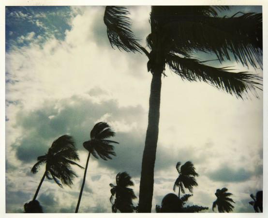 20 фотоальбомов со снимками «Полароид». Изображение №23.