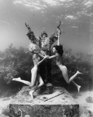 Todd Essick. Подводный мир. Изображение № 7.