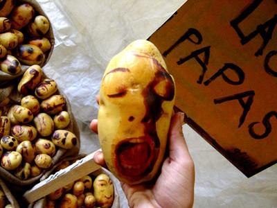 Картофельные портреты. Изображение № 1.