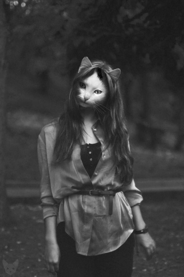 Культ личности кошки. Изображение № 10.