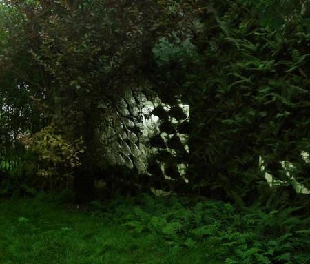 R&Sie(n)1200 гидропонических папоротников. Изображение № 7.
