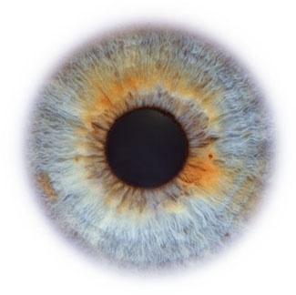 Фотограф Rankin — Eyescapes. Изображение № 6.
