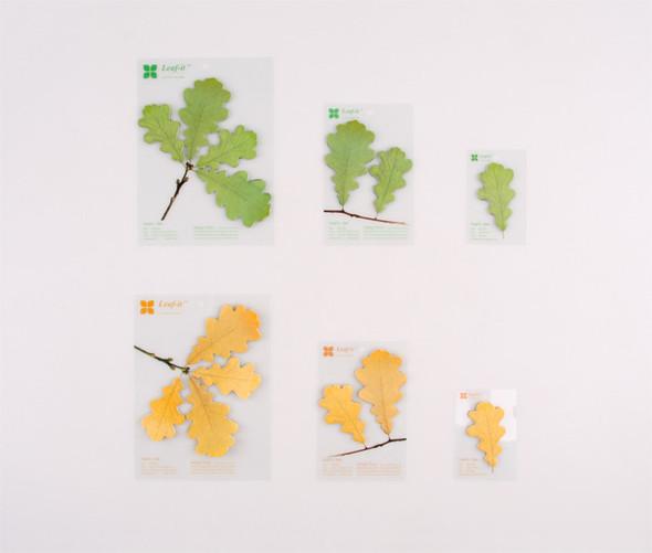 Как добавить зелени в офисе?. Изображение № 6.