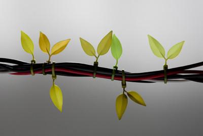 Leaf tie. Изображение № 7.