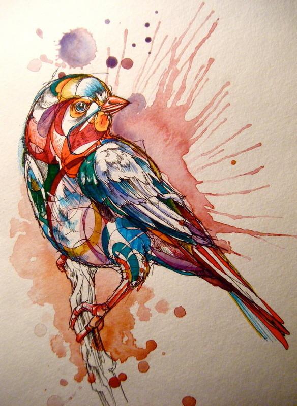 Птицы Abby Diamond. Изображение № 1.
