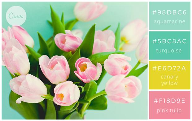 Сервис Canva предложил 100 удачных сочетаний цветов. Изображение № 9.
