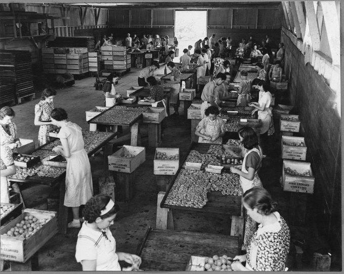 Business Insider: 23 «винтажные» фотографии Кремниевой долины XX века. Изображение № 4.