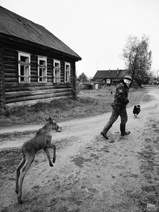 Best of Russia 2010. Изображение № 80.