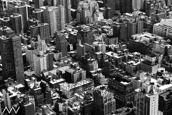 New-York. Изображение № 12.