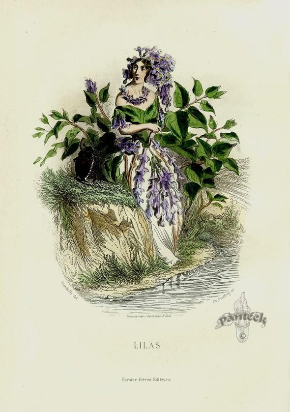 Винтажные иллюстрации J.J. Grandville. Изображение № 3.