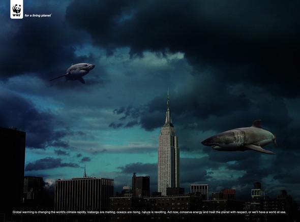 Всемирный фонд дикой природы: заживую планету. Изображение № 31.