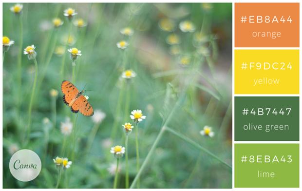 Сервис Canva предложил 100 удачных сочетаний цветов. Изображение № 18.