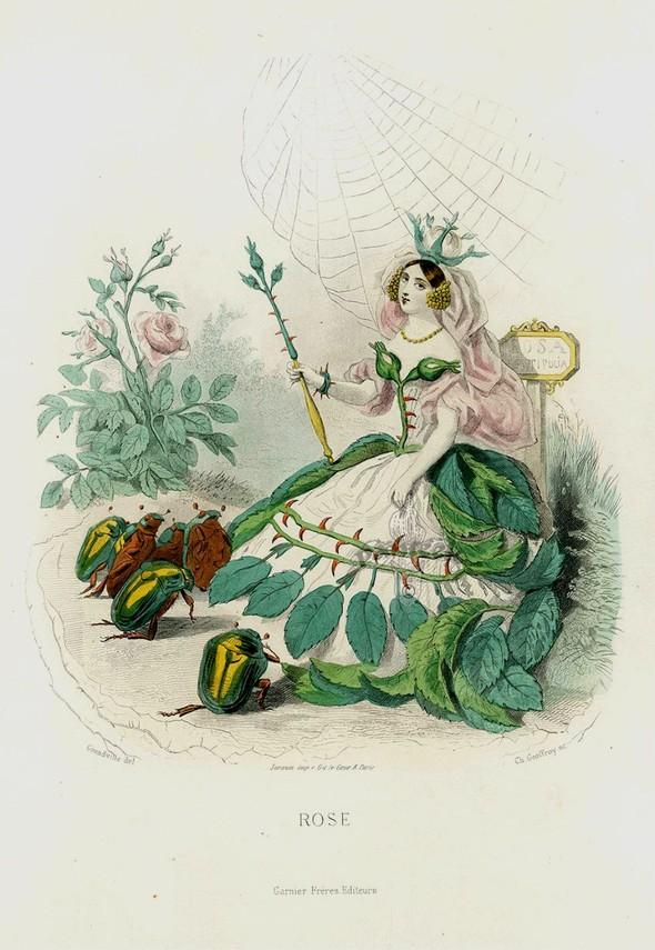Винтажные иллюстрации J.J. Grandville. Изображение № 2.