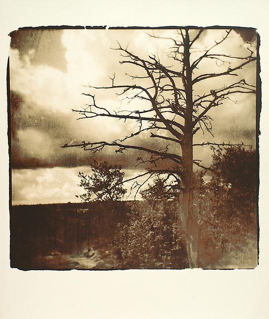 Изображение 7. Polaroidman Алексей Курбатов.. Изображение № 6.