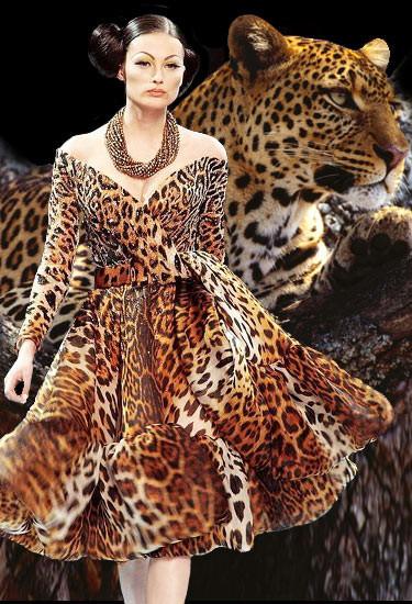 """5 """"леопардовых"""" правил. Изображение № 1."""