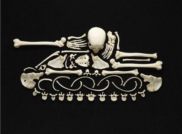 Изображение 7. Череп и кости.. Изображение № 7.