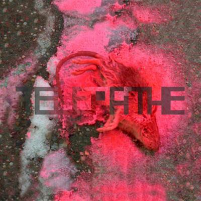 Telepathe – Dance Mother (2009) [album inside]. Изображение № 1.