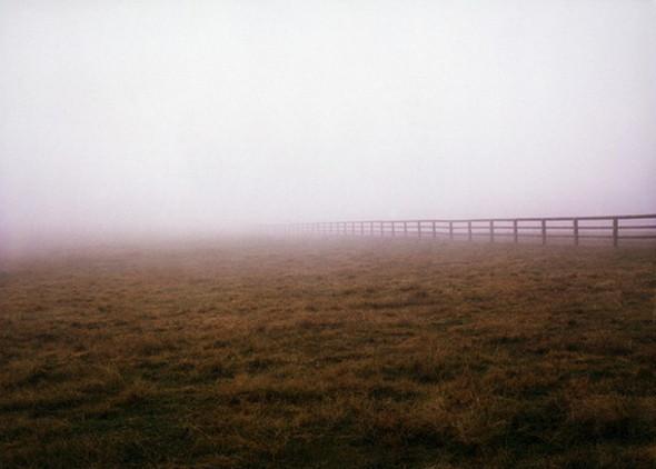 Поэзия в фотографии. Изображение № 10.