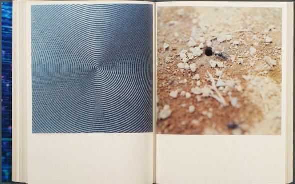 20 фотоальбомов со снимками «Полароид». Изображение №53.
