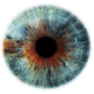 Фотограф Rankin — Eyescapes. Изображение № 8.