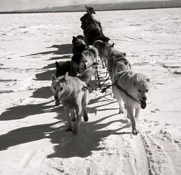 Фотографии из СССР. Изображение № 35.