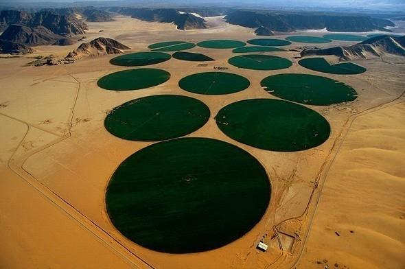 """Ирригационные круги или """"карусели орошения"""" в Иордании. Изображение № 6."""