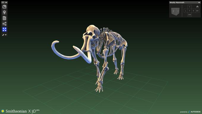Музейные экспонаты можно будет распечатать на 3D-принтере. Изображение № 8.