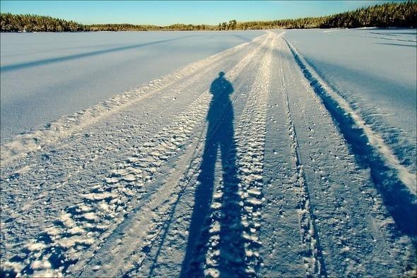 Изображение 26. Выходные в шведском лесу.. Изображение № 26.