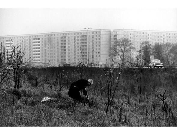 Большой город: Берлин и берлинцы. Изображение № 36.