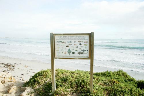 Изображение 31. Море и небо-два символа бесконечности.. Изображение № 30.