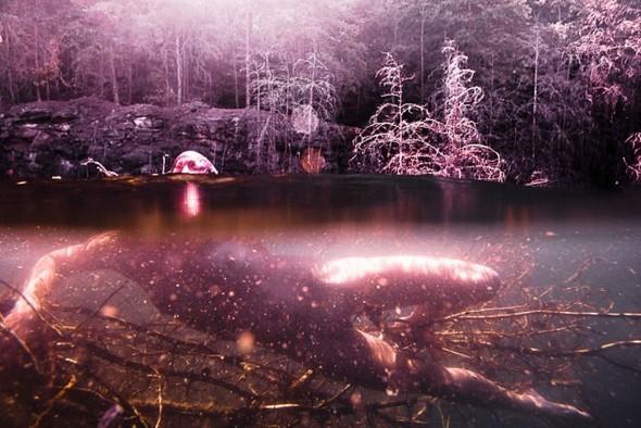 Подводная съемка OmniPhantasmic. Изображение № 13.