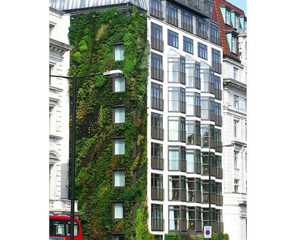 Зеленая архитектура. Изображение № 21.