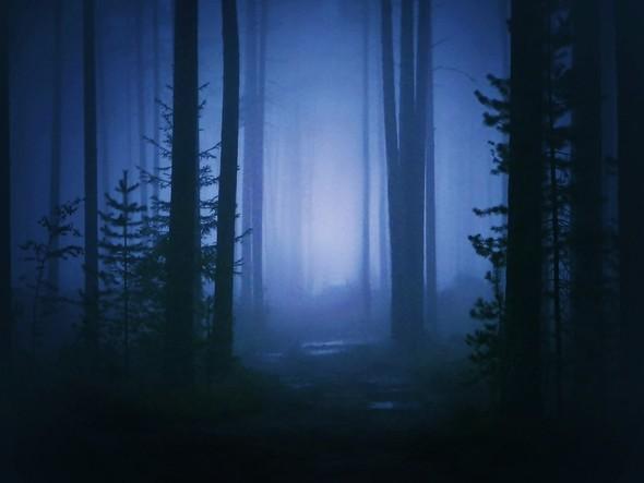 My wonderland. Изображение № 1.