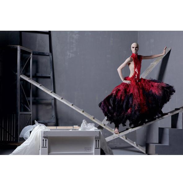 Стелла Теннант в платье из коллекции Alexander McQueen SS 2011. Изображение № 2.