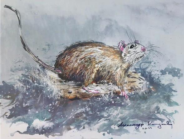 """Иллюстрация к стихотворению """"Крыса на плоту"""". Изображение № 4."""