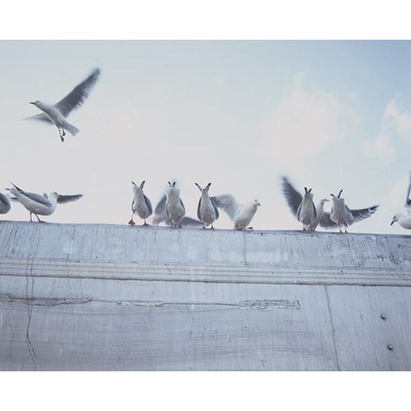 Фотограф: Тоби Барроу. Изображение № 11.
