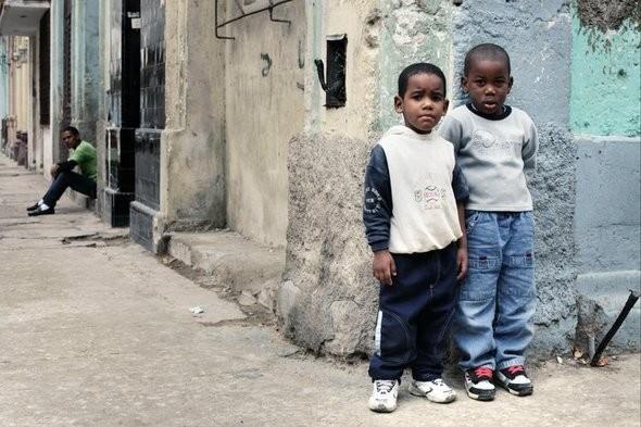 Изображение 35. Кубинский лук. Зима 2010/2011.. Изображение № 4.