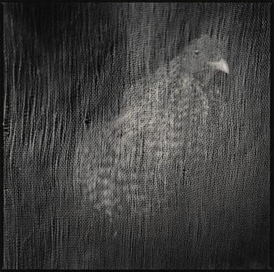 "Hiroshi Watanabe ""I seek pure beauty. "". Изображение № 4."