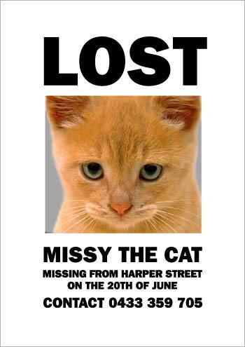 Кошка Мисси. Изображение № 5.