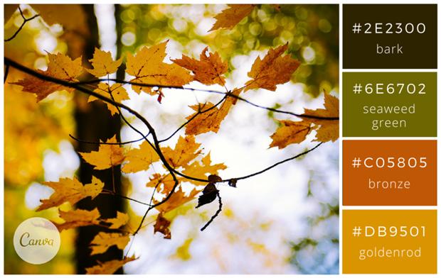 Сервис Canva предложил 100 удачных сочетаний цветов. Изображение № 21.