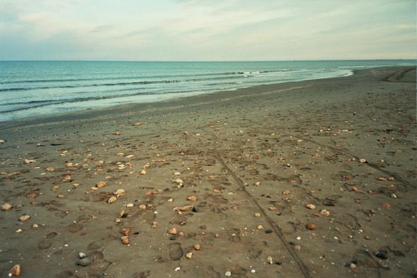 Пляж Fangar. Изображение №37.